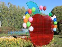 Семейный клуб «София» принял участие в фестивале «Бирское яблоко»